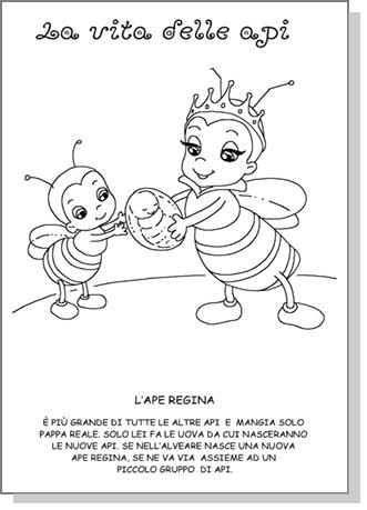disegni vita delle api